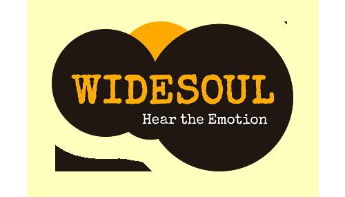 Widesoul.com Logo